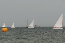 MV Cat Boat Race