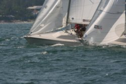 Vineyard Haven Yacht Club Sonar Race