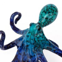 Small Blue Octopus