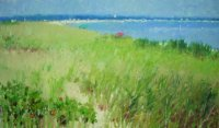 Grasses at Oak Bluffs Beach