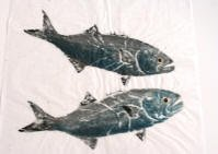 Two Blue Fish