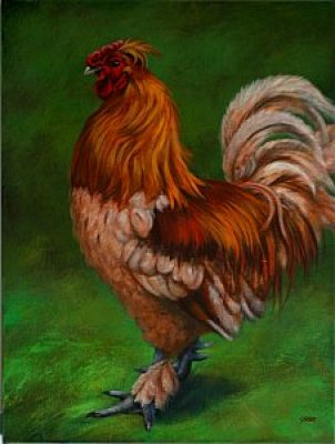 Caryn King - Rooster